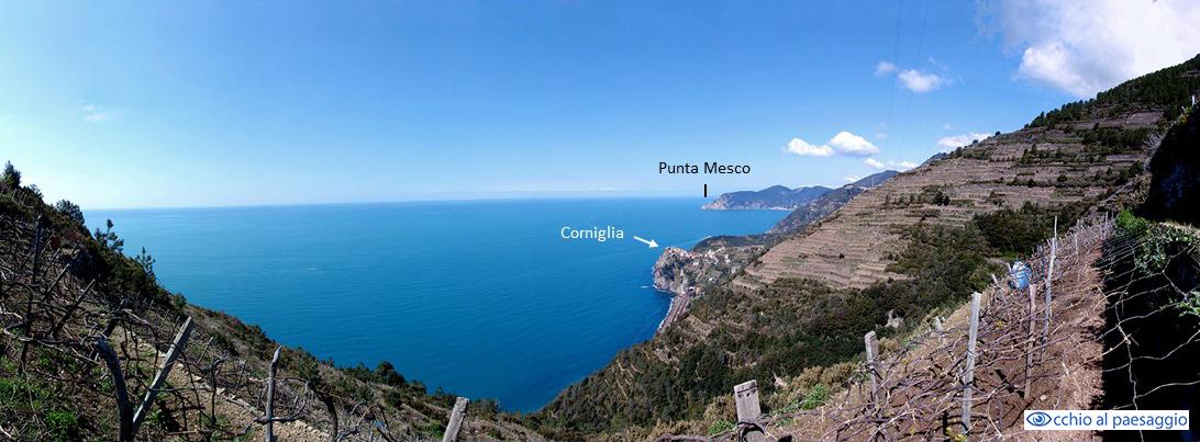 Corniglia, 5 Terre (SP) Liguria