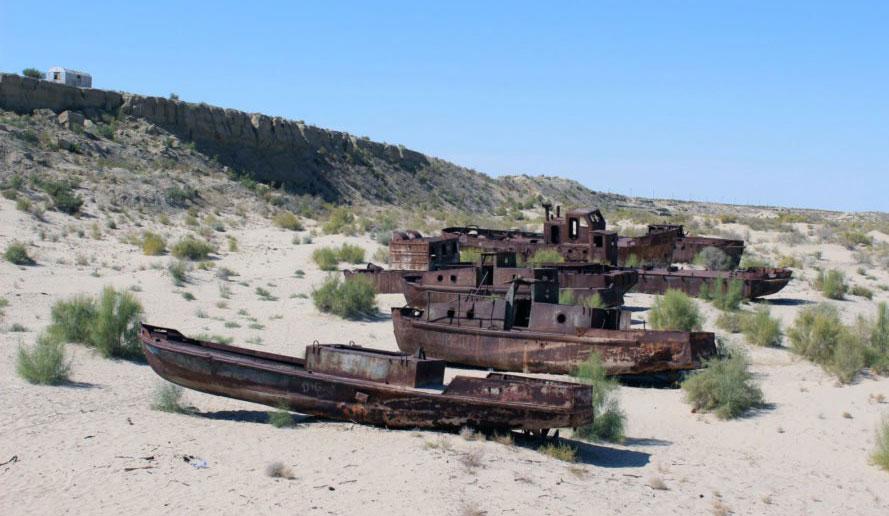 Deserto di Aralkhum, Uzbekistan-Kazakistan (EX) Estera